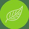 ESG icon green